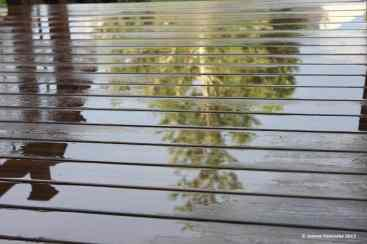 Image result for picture stirred up reflections