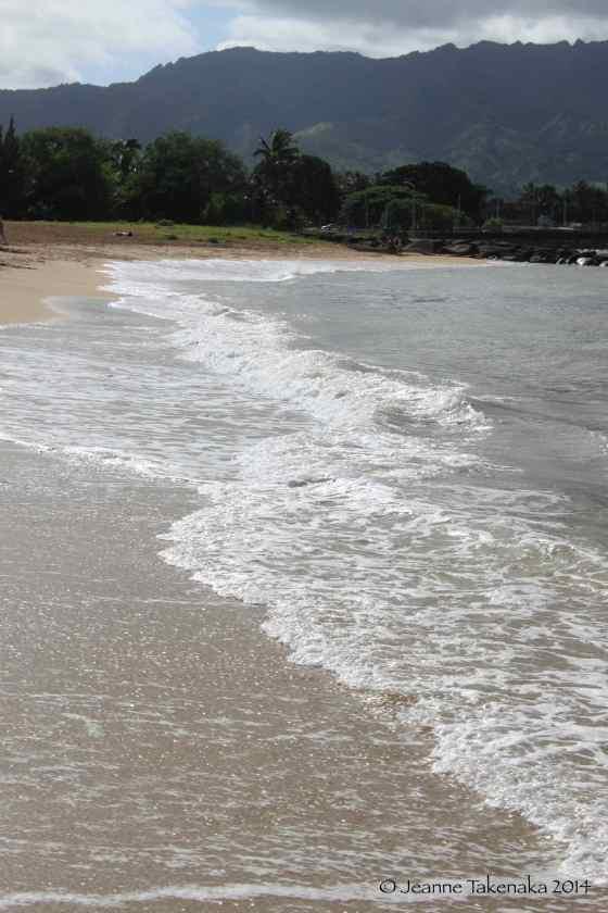 Waves wash onto shore