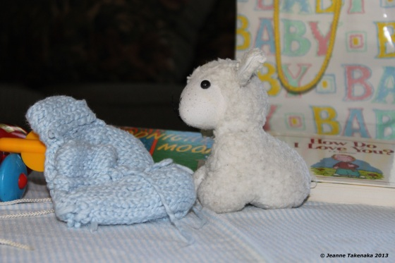 Baby booties and lambie