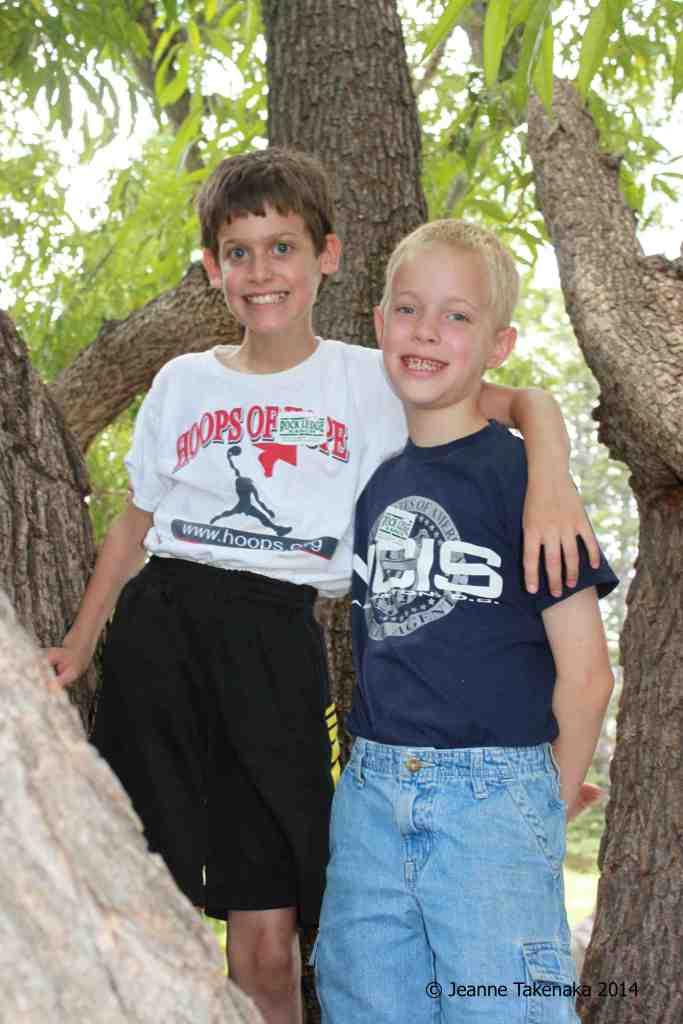 Boys in tree