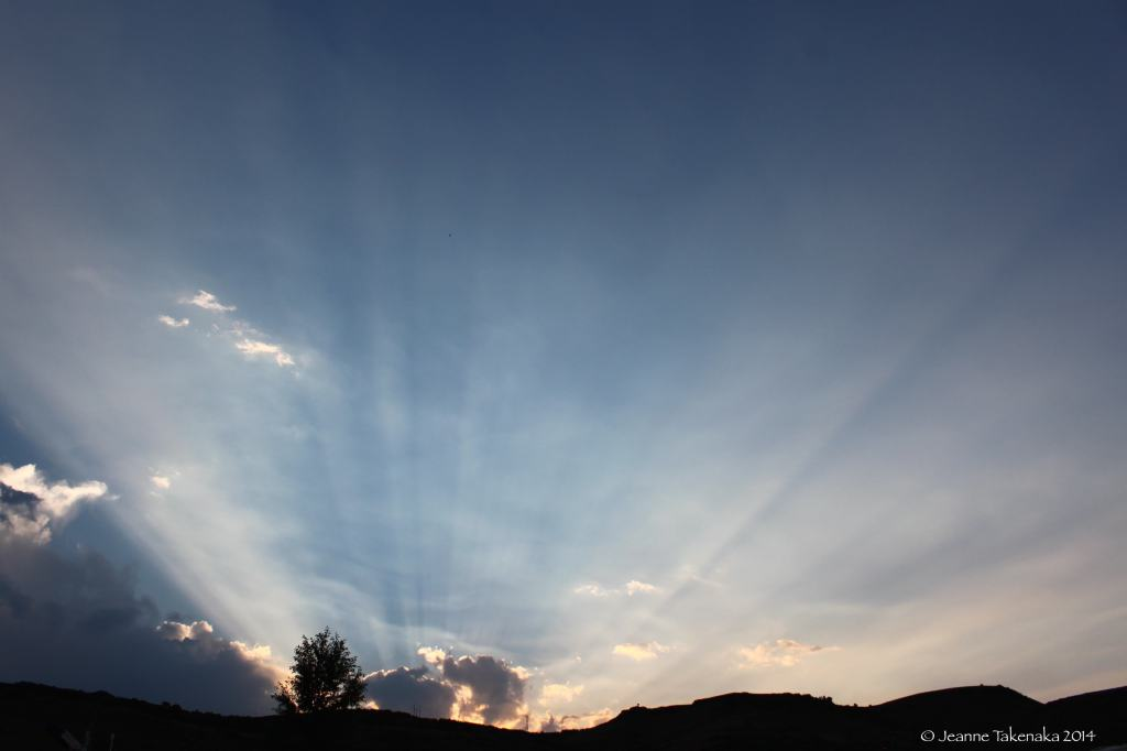 Evening sun rays