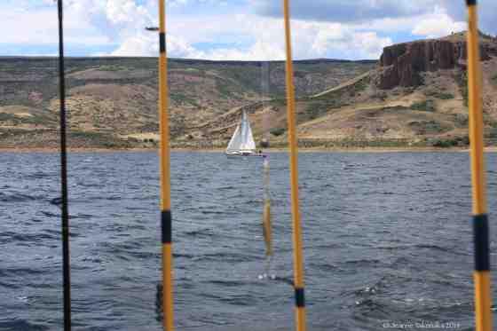 Fishing rod sail boat