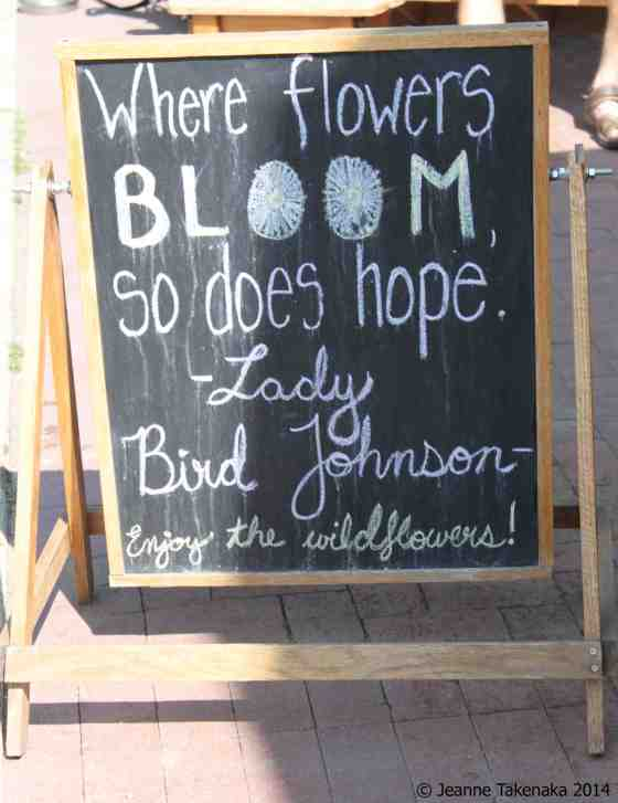 Flowers Bloom quote
