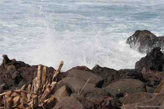 Black rocks and waves