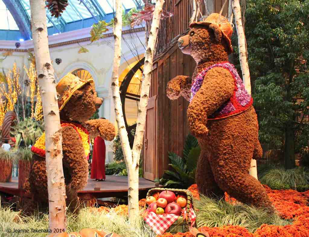 Bears with hats