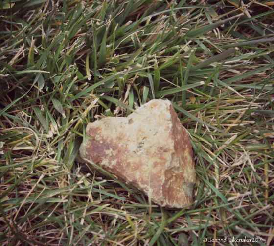 Heart in grass copy