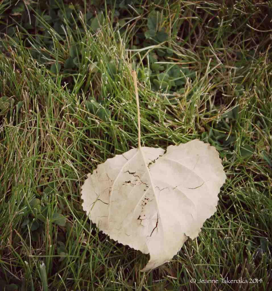 Heart with cracks copy
