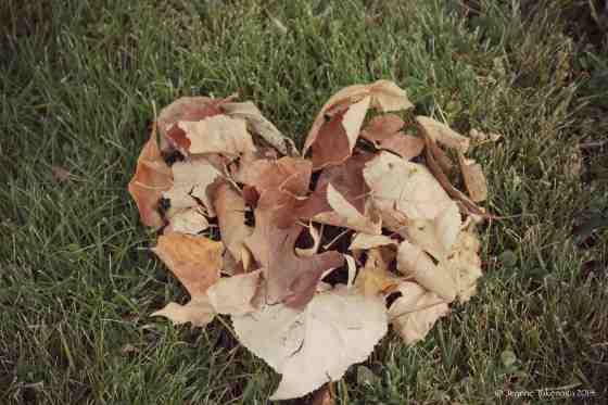 Leafy Heart copy