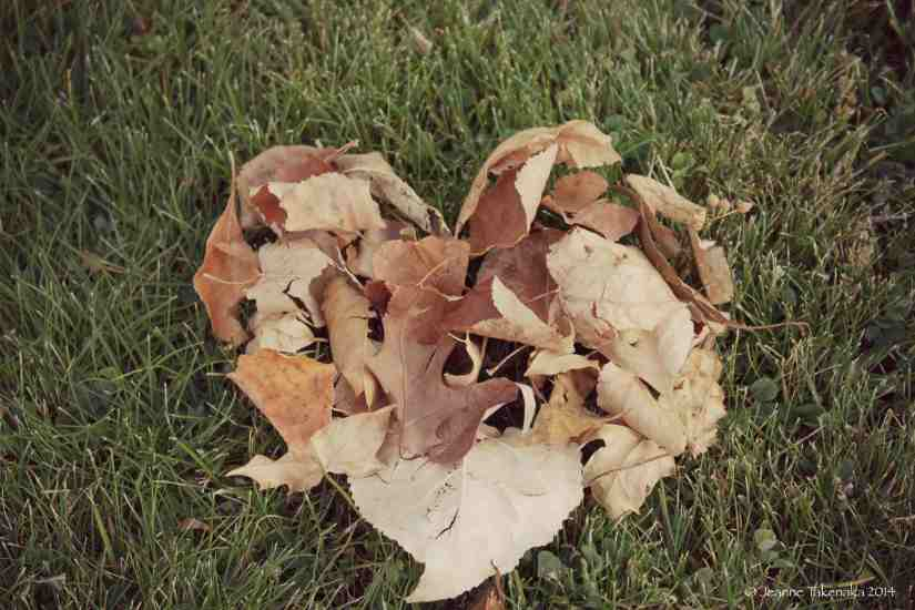 A heart made from browned leaves