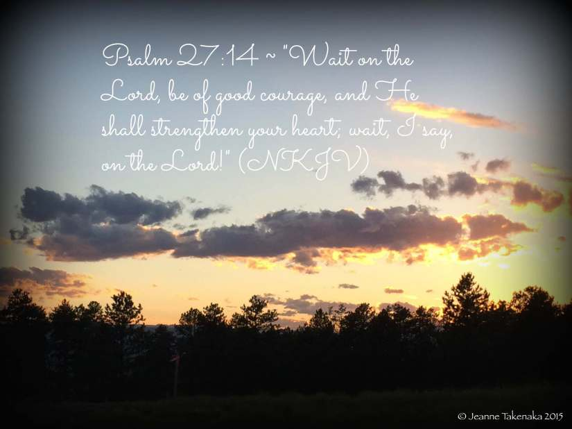 Psalm 2714 quote on sunset copy