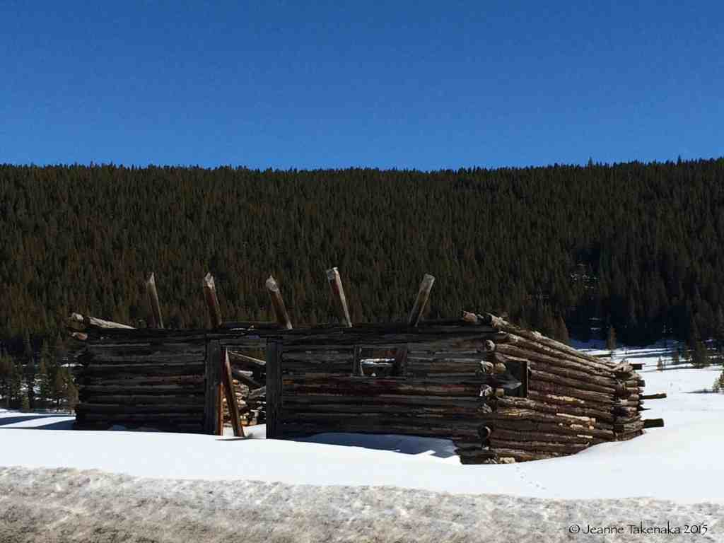 Half built cabin