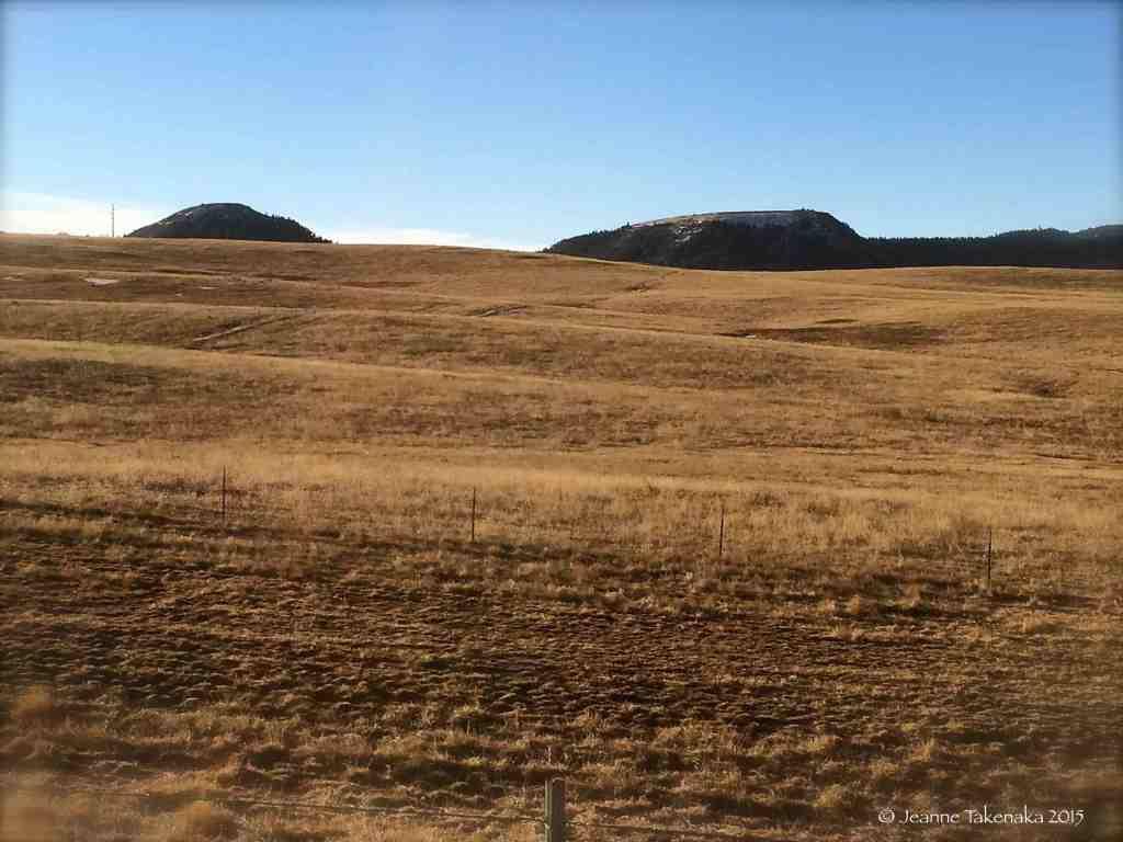 Resting fields