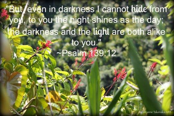 Psalm 13912 darkness and light alike copy