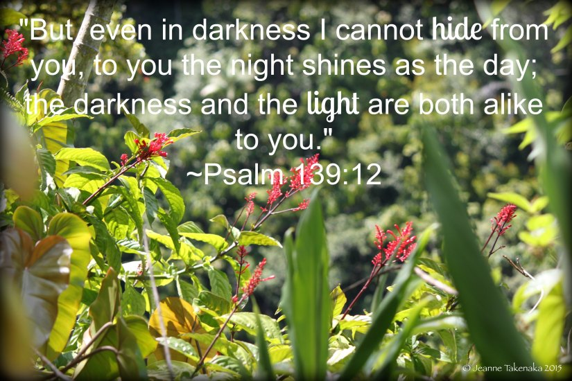Psalm 13912 darkness and light alike copy