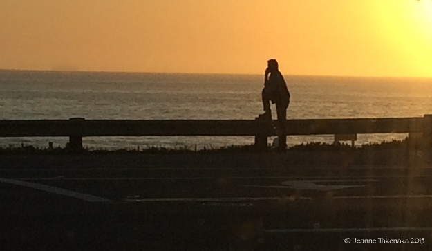 Solitary at sunset