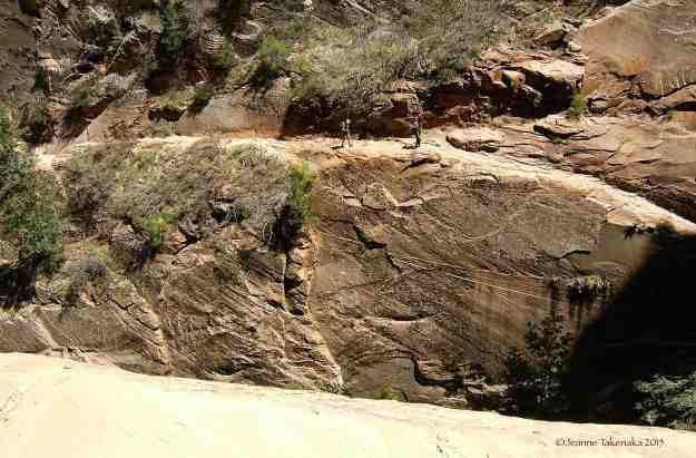 Zion narrow trail