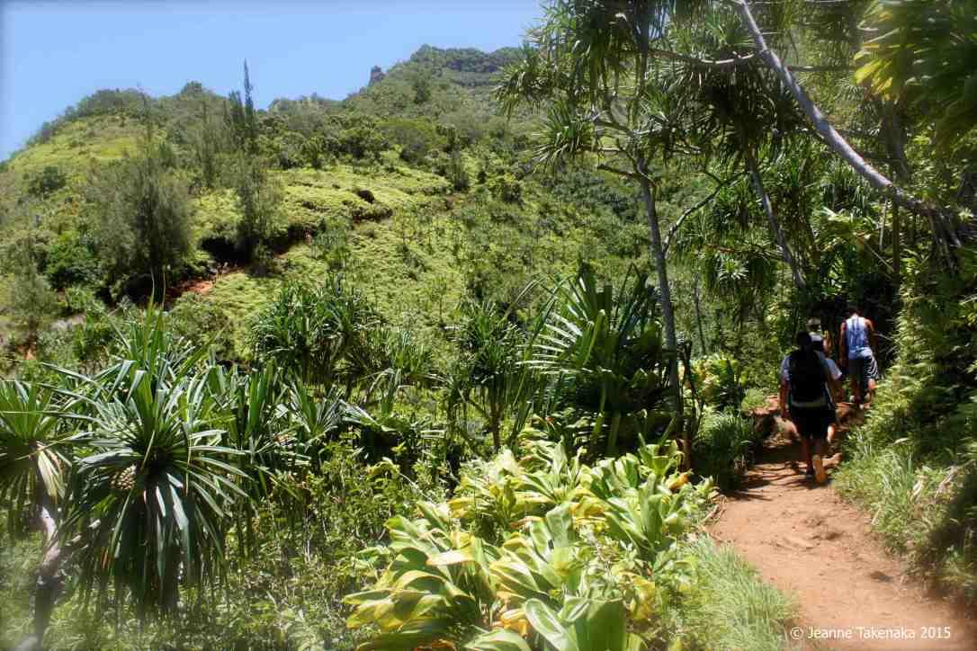 Hiking back to trailhead K-trail