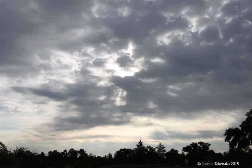 Quiet morning sky