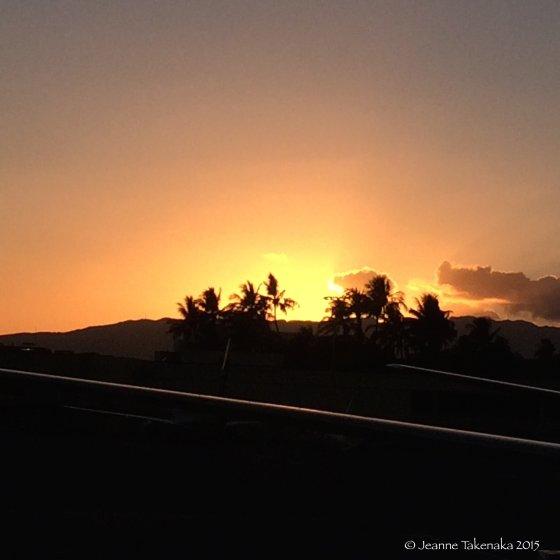 Summer gift airport sunset