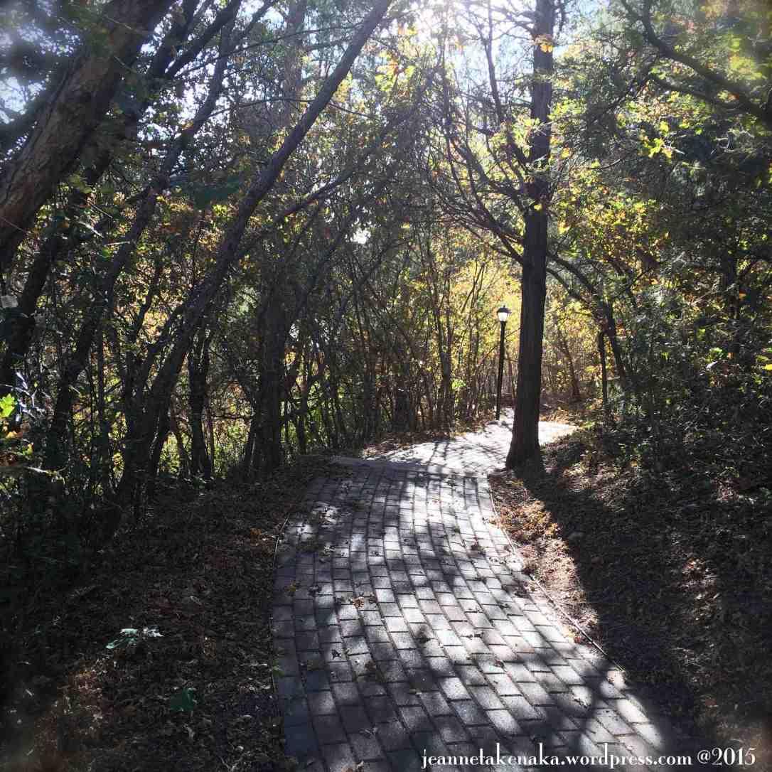 Autumn Leafy Pathway