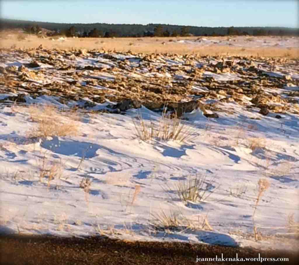 snow-blown landscape