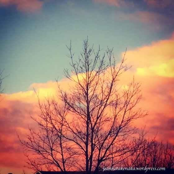 Morning sunrise glory