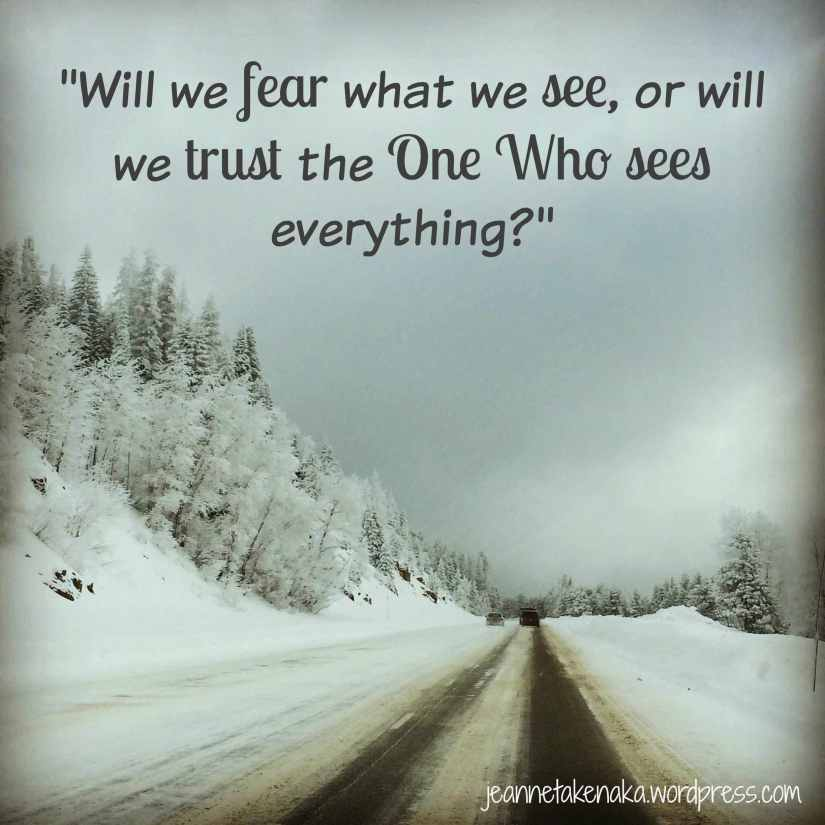 Fear what we see copy