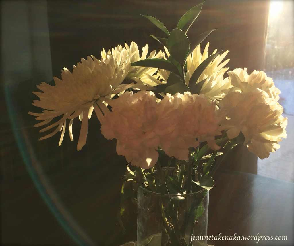 Morning light on flowers