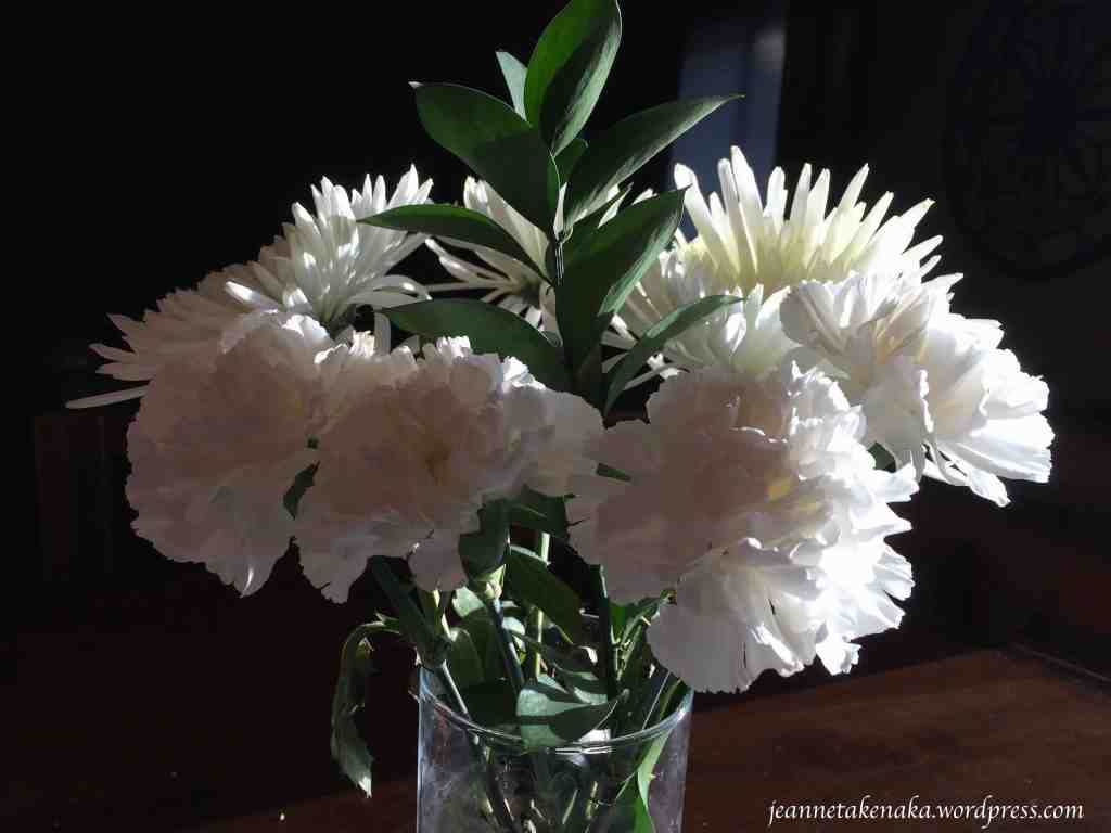 white flowers in sunlight