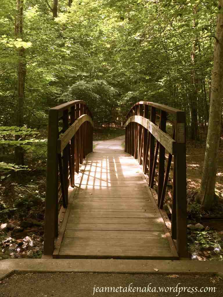 Walking bridge to beauty