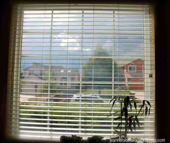 Window with shade