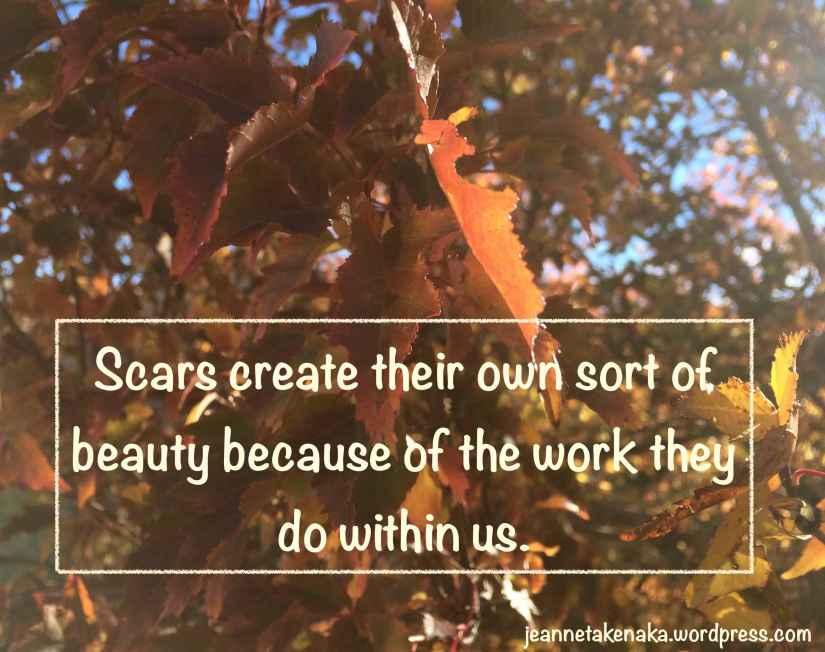 Scars beauty copy