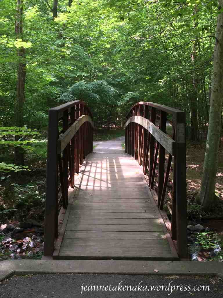 sun-and-shadow-bridge