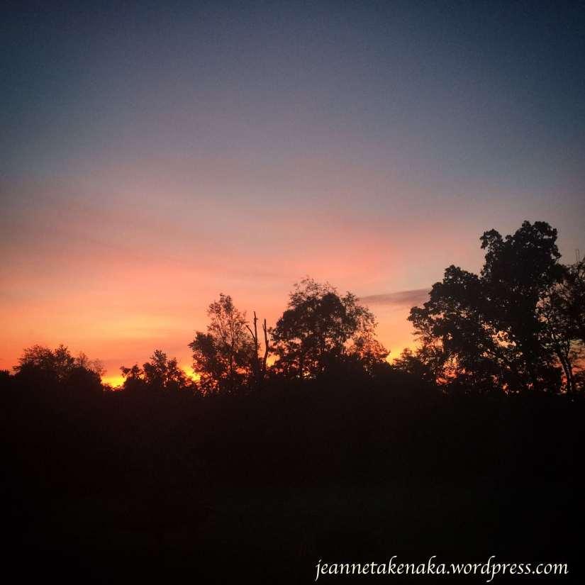 tn-sunrise