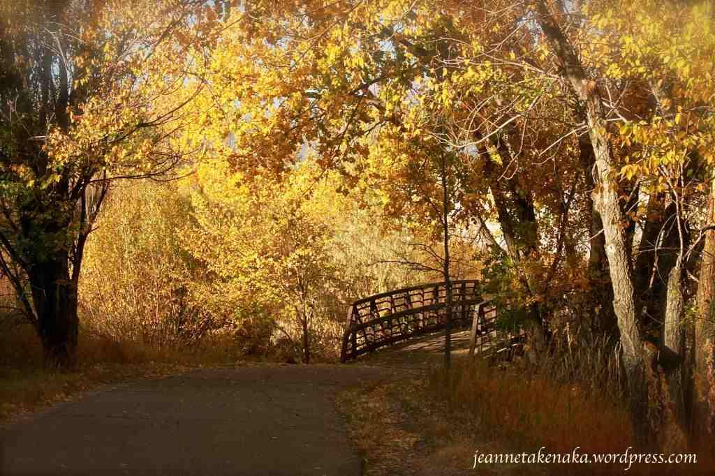 inviting-bridge