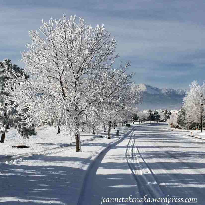 wintry-road