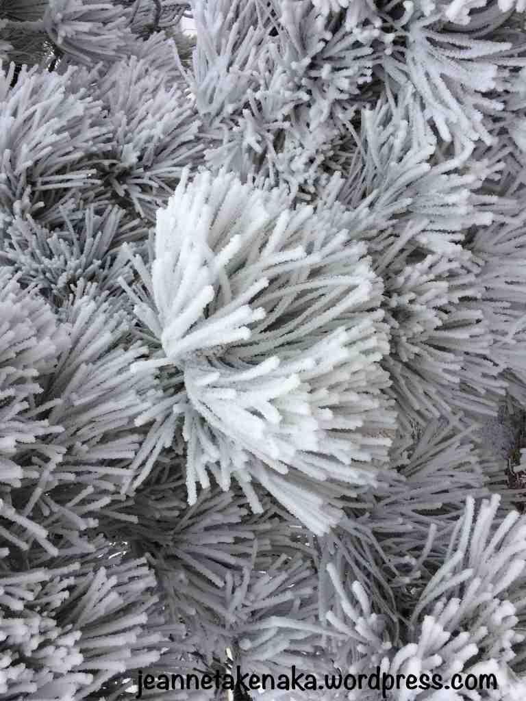 hoarfrost-pine-needles