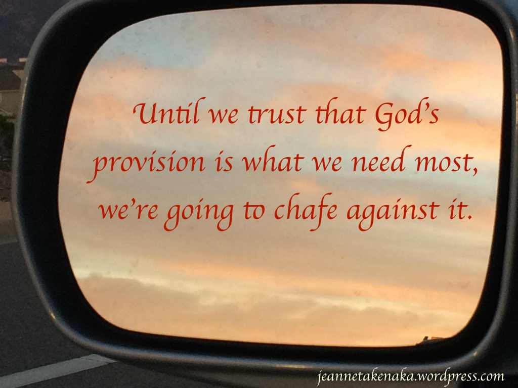 trust-that-gods-provision-copy