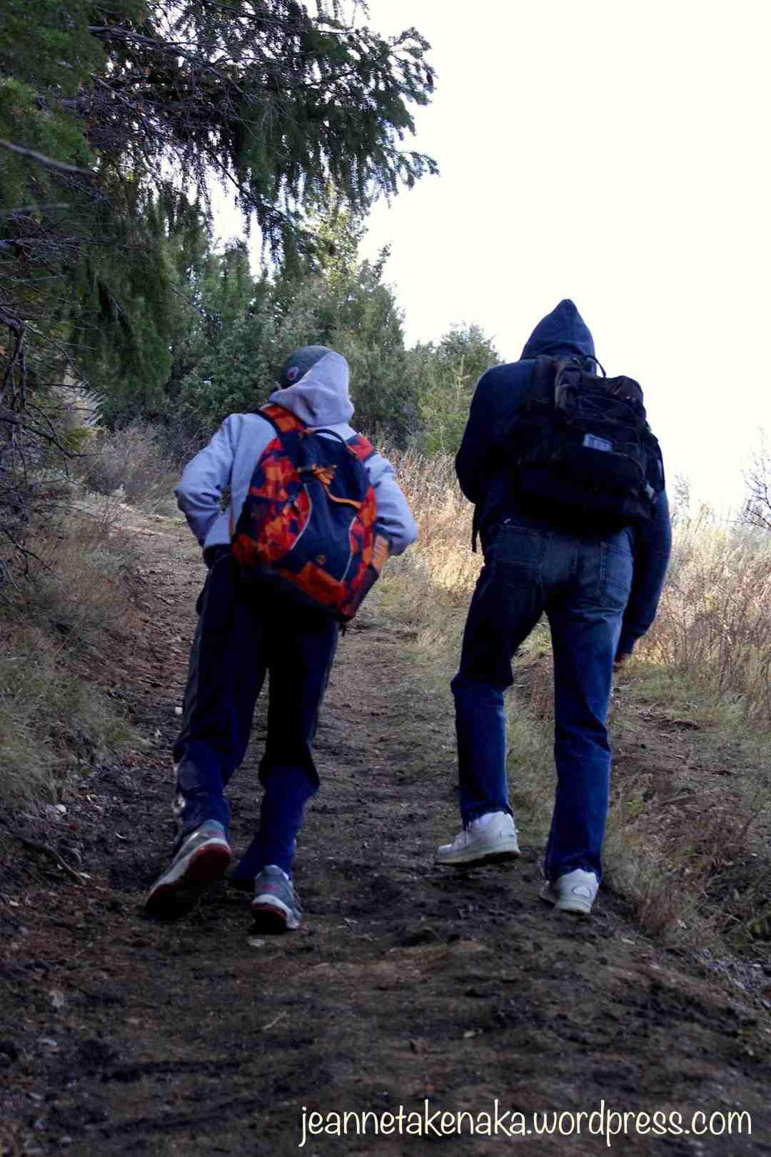 A father and son hiking up a path, their backs to the camera