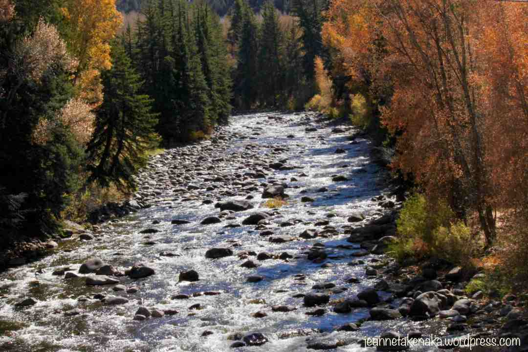A mountain river flowing over rocks with autumn colored trees bordering each side of it