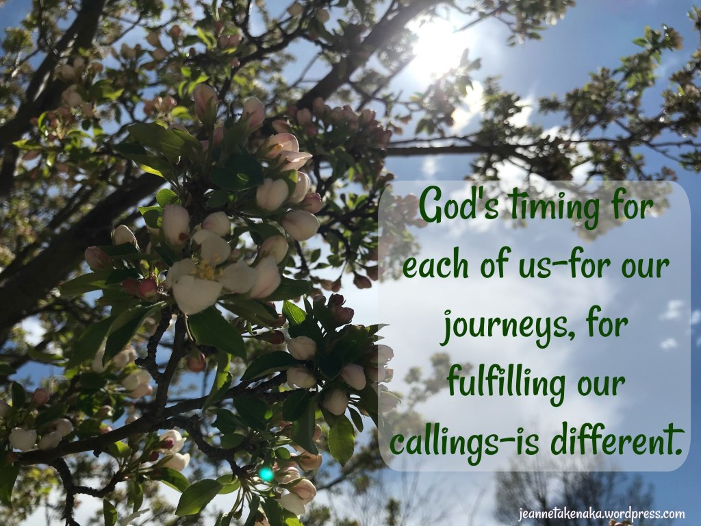 "Comparison: God's Timing ""Each of us has a calling, a dream. But the truth is? God's timing for each of us—for our journeys, for us to fulfill our callings—is different."""