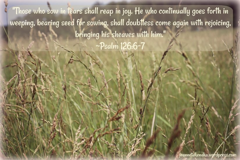 "Meme with the words: ""Those who sow in tears shall reap in joy. He who continually goes forth in weeping, bearing seed for sowing, shall doubtless come again with rejoicing, bringing his sheaves with him."" ~Psalm 126:6-7 on a backdrop of wheat growing in a field."