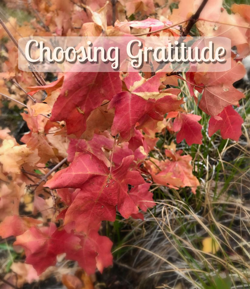 Choosing Gratitude (series): Themes of Gratitude