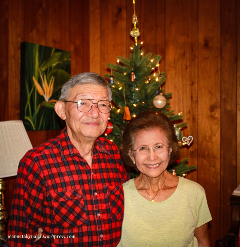 A photo of an older couple standing in front of a Christmas tree