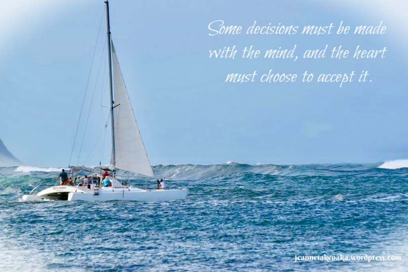 "Meme: a catamaran heading out to face big waves. The words say: ""Some decisions must be made with the mind, and the heart must choose to accept it."""