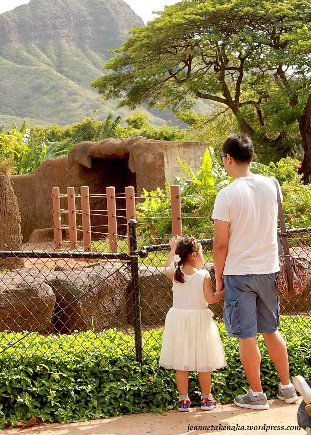 A father and daughter standing at an exhibit at a zoo