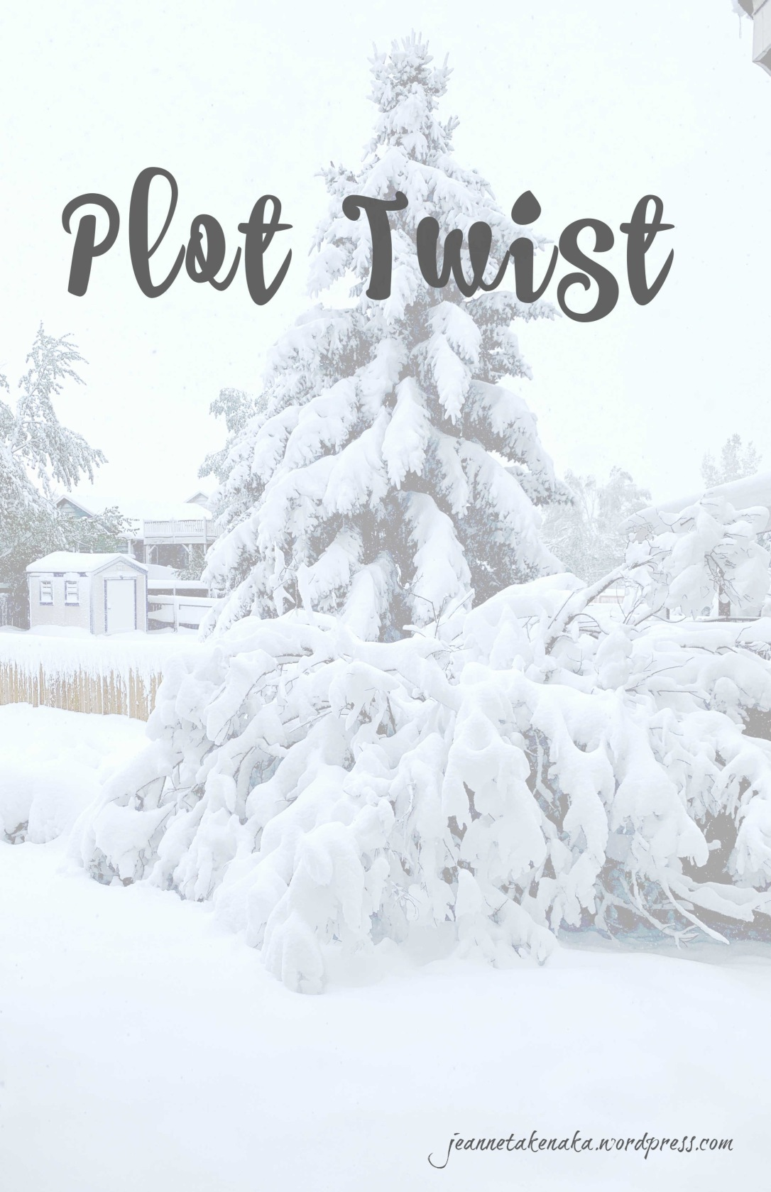 Meme that says Plot Twist super-imposed over a pic of a snow-covered tree