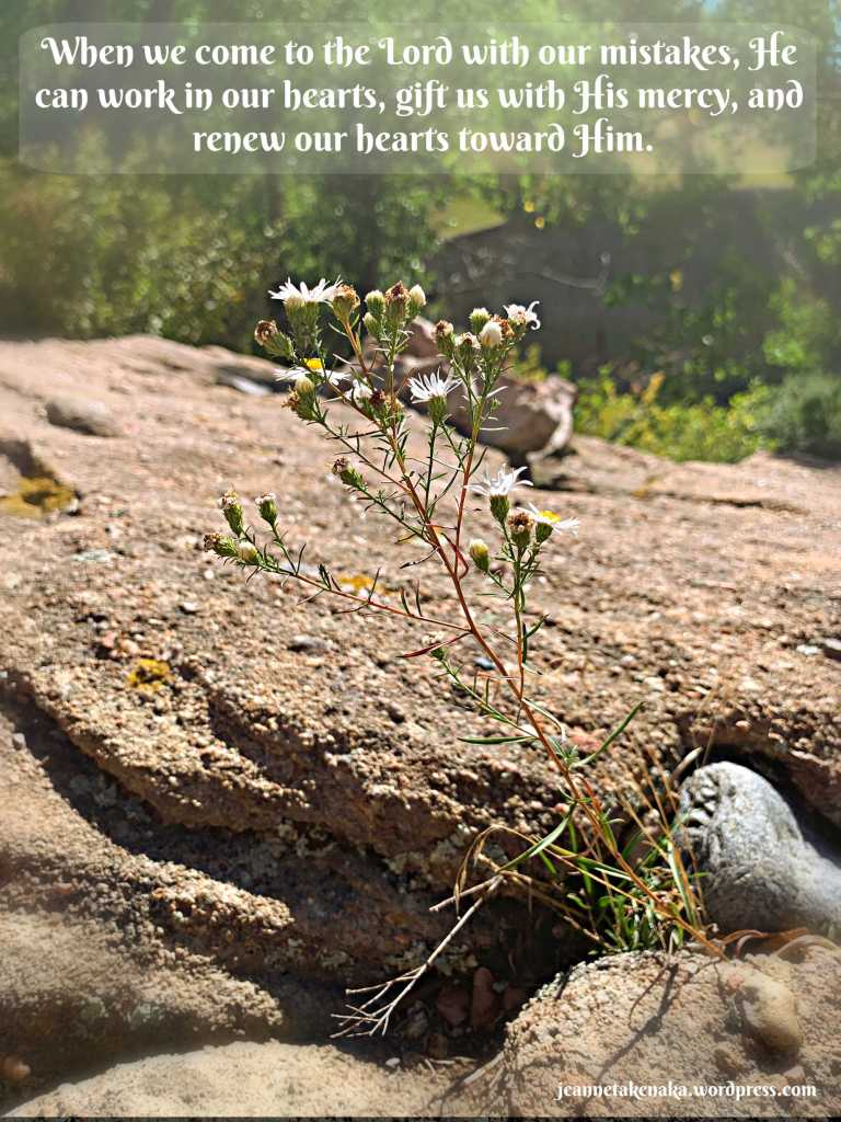 "Meme: ""when we come to the Lord with our mistakes, He can work in our hearts, gift us with His mercy and renew our hearts toward him."" on a backdrop of wildflowers growing out of a crevice between rocks"