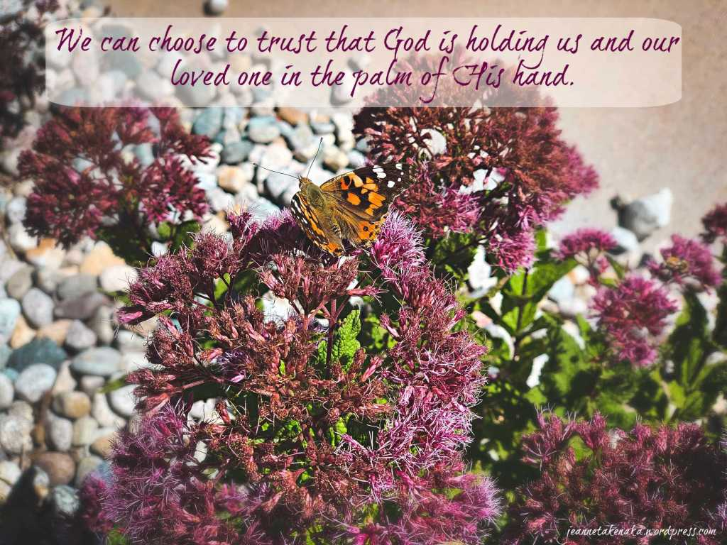 "Meme with the words, ""We can choose to trust that God is holding us an dour loved one in the palm off His hand"" set on a backdrop with a butterfly on a flowered bush"