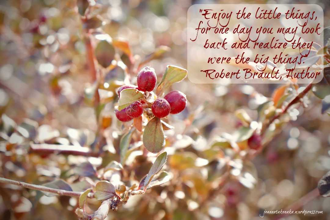 """Meme with the words: """"Enjoy the little things, for one day you may look back and realize they were the big things."""" —Robert Brault, Author on a backdrop of a photo of berries"""